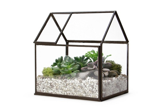 house terrarium_open roof_2