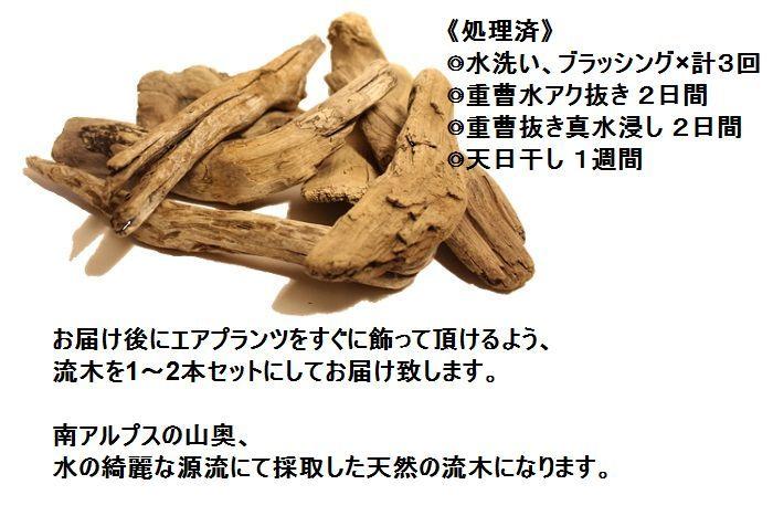 ryuboku70467
